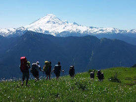 Backpacking Course Mt Baker Yellow Aster Butte Smal