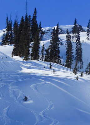Skier in Red Mountain Pass CO