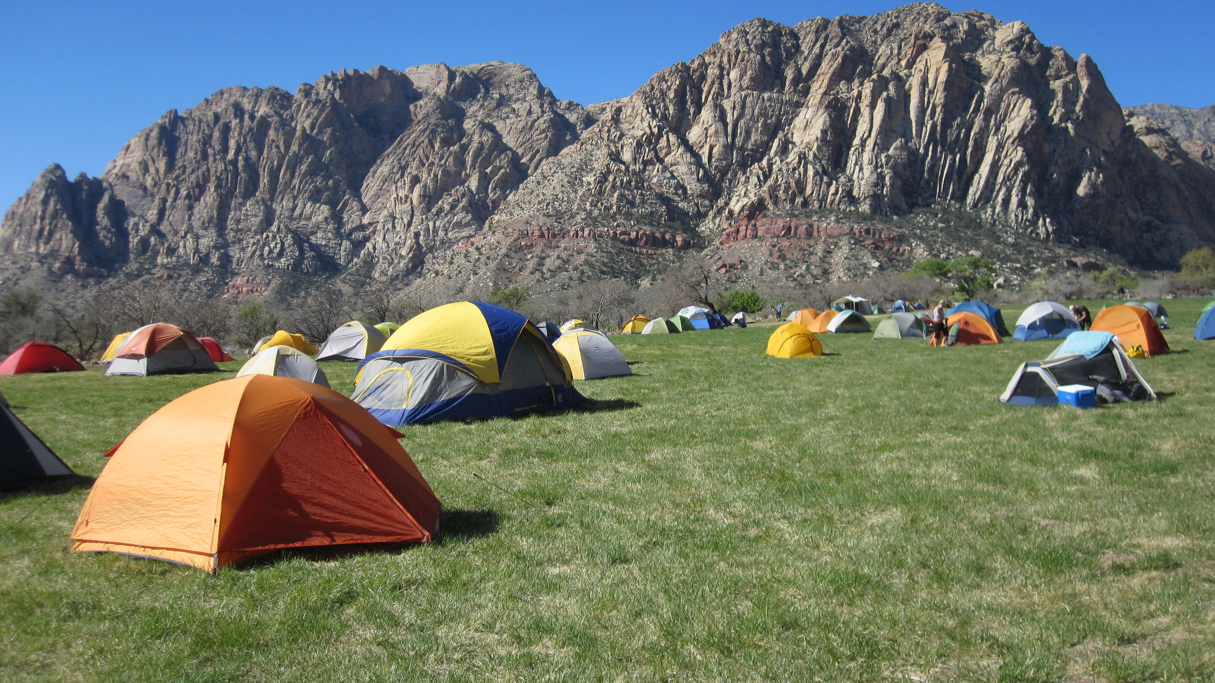 Guided Rock Climbing - Red Rock/Las Vegas