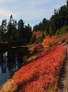 A trail winds by a calm alpine lake in autumn.